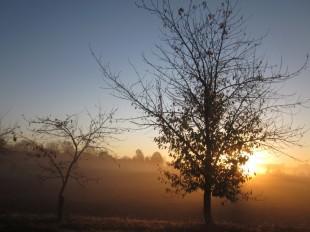 Lever de soleil à Granéjouls