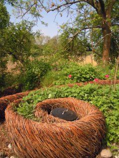 Spirale florale