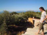 Sea, olives and sun!